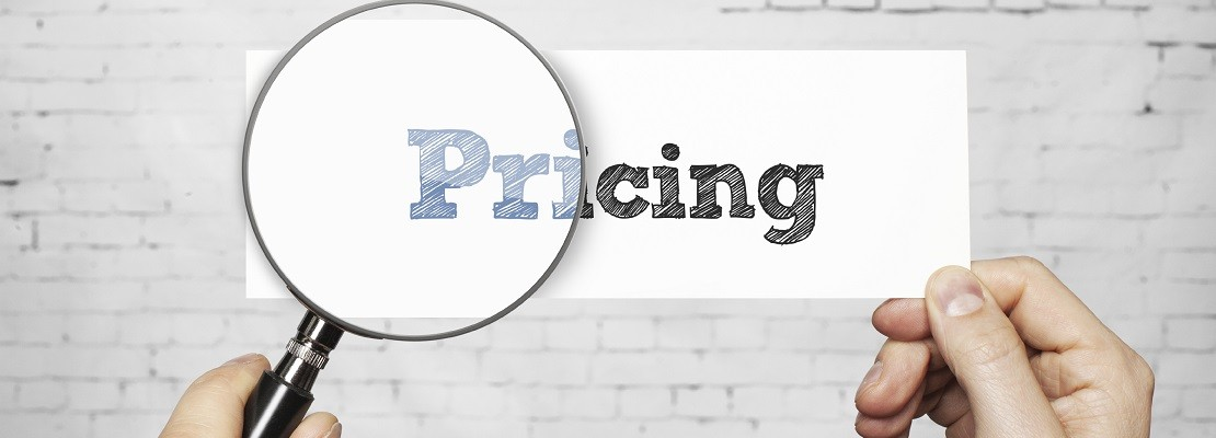 PRICING STRATEGY FOR ONLINE STORES